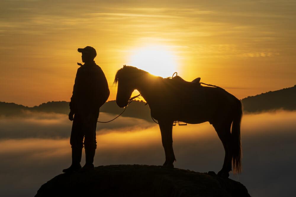 człowiek i koń na tle zachodu słońca