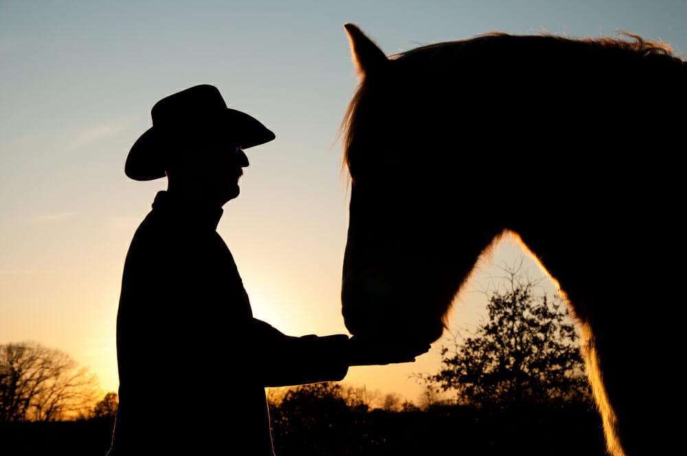 człowiek w kapeluszu dotyka konia