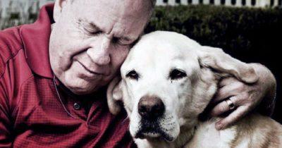 Niewidomy ocalały z 11 września wspomina, jak jego pies przewodnik pomógł mu wyjść z World Trade Center