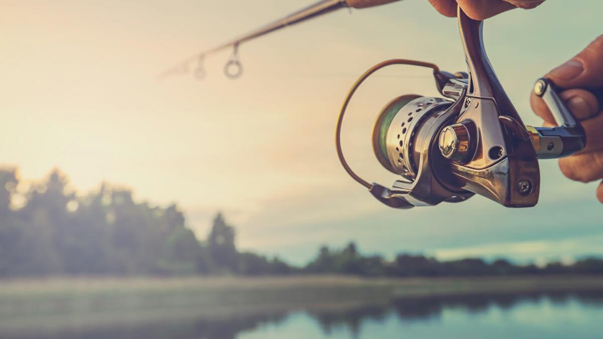Kuva: Shutterstock / Smiltena