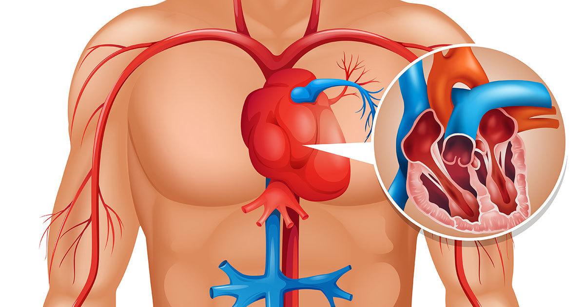 hjerteinfarkt kvinner 20 år