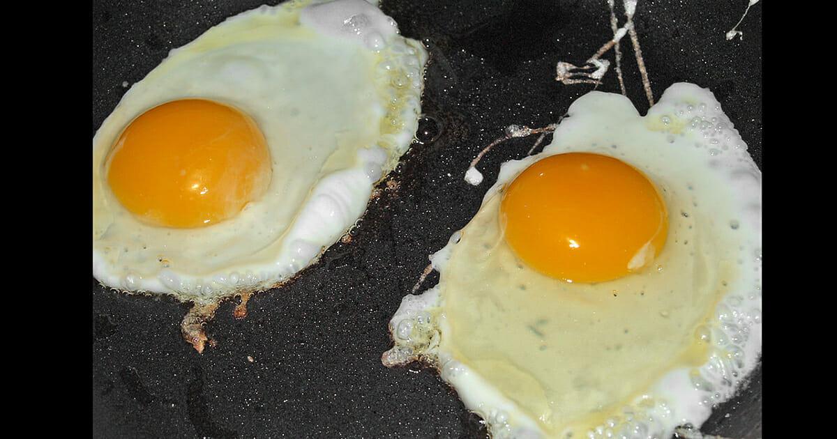 er det sunt å spise egg hver dag
