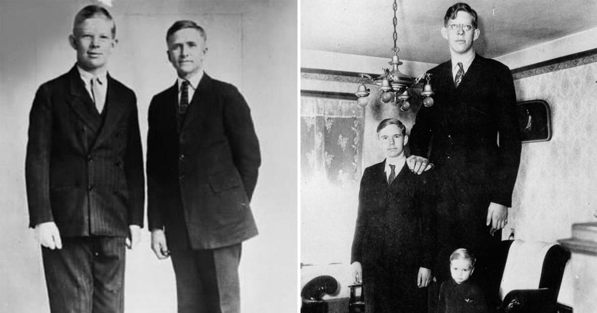 hvor høj er verdens højeste mand