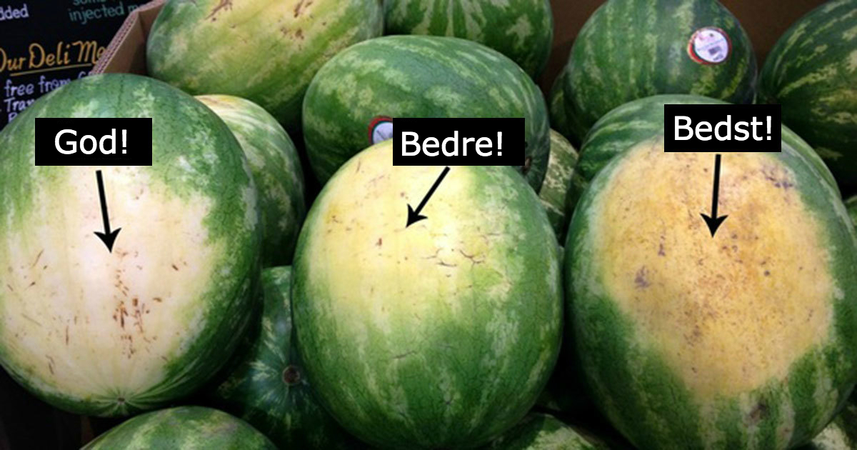 hvor kan man købe små sure med vandmelon