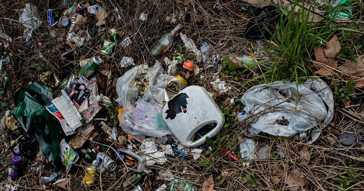 affald i naturen