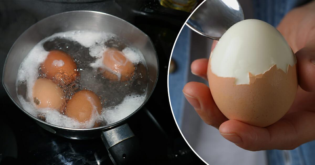 Udenfor kogte køleskab holdbarhed æg kogt æg
