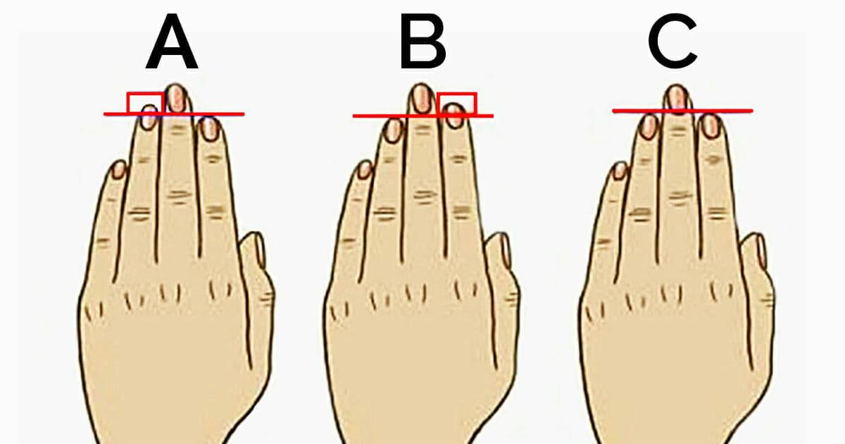 O comprimento dos seus dedos revelam a verdade sobre sua ...